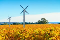 Windmühlen in Riverland-Weinberg im Herbst lizenzfreie stockfotografie