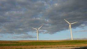 Windmühlen am Sonnenaufgang stock video