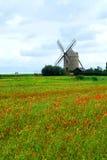 Windmühlen- und Mohnblumefeld Stockfotos