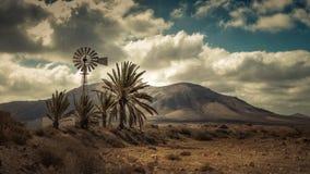 Windmühlen- und Palmen Stockfoto