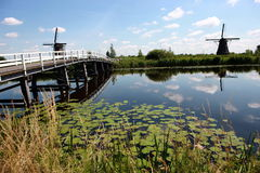 Windmühlendorf in Holland Lizenzfreie Stockbilder