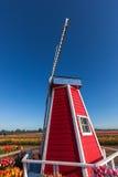 Windmühle auf Tulip Farm Stockfotos