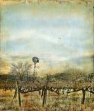 Windmühle im Weinberg auf einem Grunge Hintergrund Stockfoto
