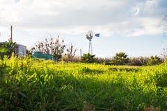 Windmil su un prato e su un cielo blu Fotografia Stock