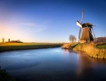 Windmill在冬天下午的de Meervogel 免版税库存图片