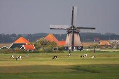 windmill Arkivbild