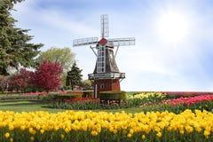 windmill Arkivfoto