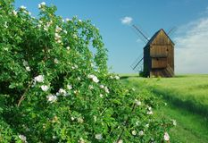Windmill. Old windmill standing in a field.Silesian,North Moravia,Czech republic Stock Photo