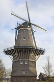 Windmill in Amsterdam Royalty Free Stock Images