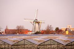 Windmill And Greenhouses Royalty Free Stock Photo