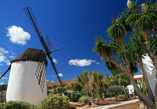Windmill in Antigua. Fuerteventura, Canary Islands, Spain stock photography