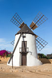Windmill in Antigua on Fuerteventura Royalty Free Stock Image