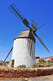 Windmill in Antigua, Fuerteventura in Spain Stock Images