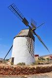Windmill in Antigua, Fuerteventura in Spain Stock Images