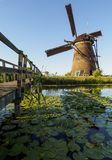A windmill on the bank of a canal with reeds in Kinderdijk Holland, Netherlands. stock image
