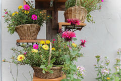baskets of flowers Stock Images