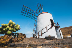 Windmill on blue sky background in cactus garden, Guatiza village, Lanzarote royalty free stock photo