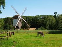 Windmill in Bokrijk Stock Photography