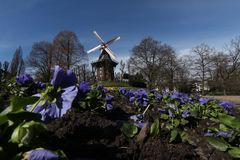 Windmill in Bremen, Germany. An old windmill during spring in Bremen, Germany Royalty Free Stock Photos