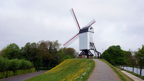 Windmill in Brugge in Belgium Royalty Free Stock Image