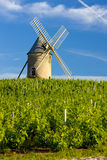Windmill in Burgundy. Vineyards with windmill near Ch�nas, Beaujolais, Burgundy, France Royalty Free Stock Photo