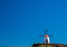 Windmill in the Cactus Garden in Lanzarote stock photos