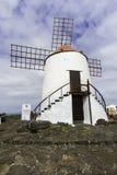 Windmill in Cactus Garden in Lanzarote Stock Photo