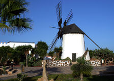 Windmill in Canary Islands. Scenic view of traditional white windmill on Fuertaventura island, Canary Islands, Spain royalty free stock photos