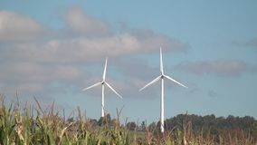 Windmill, Clean Energy from Wind Power Farm, Electricity stock footage