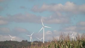 Windmill, Clean Energy from Wind Power Farm, Electricity stock video footage