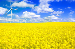 Windmill conceptual image. Windmills conceptual image. Windmill on yellow field in summer Royalty Free Stock Photo