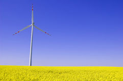 Windmill conceptual image. Windmill on yellow field in summer Stock Photography