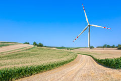 The windmill on the corn field Stock Images