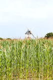 Windmill in cornfield, France Stock Image