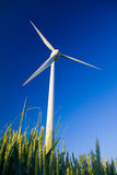 Windmill and crop Royalty Free Stock Photos