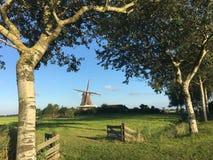 Windmill De Hond Lizenzfreie Stockfotos