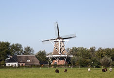 Windmill De Hond in Moddergat, the Netherlands stock photo