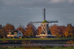 Windmill De Olde Zwarver in Kampen, Netherlands on an early autumn morning. Gold colored trees in the background and the IJssel river in the foreground Stock Photos