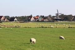 Windmill De Verwachting, Hollum, Ameland, Olanda fotografia stock