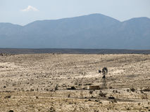 Windmill in the desert. Desolate landscape in the desert of New Mexico Royalty Free Stock Images