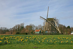 The windmill in Dutch countryside Royalty Free Stock Photos