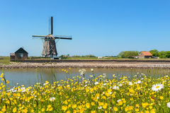 Windmill at Dutch island Texel. Windmill and wild flowers at Dutch wadden island Texel stock photos