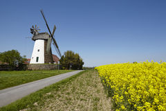 Windmill Eickhorst Hille Royalty Free Stock Photos