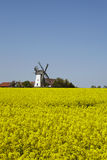 Windmill Eickhorst Hille Stock Photos