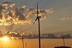 Windmill farm at dawn 8 Royalty Free Stock Photo