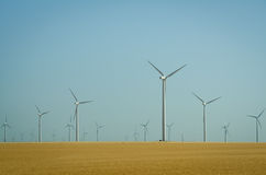 Windmill farm in the prairies. Dozens of windmills in a rural setting provide alternative energy for urban centers Stock Photo