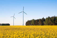 Windmill  farm in the rape field Royalty Free Stock Images