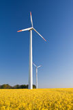 Windmill  farm in the rape field Royalty Free Stock Photography