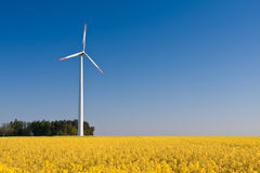 Windmill  farm in the rape field Stock Photography