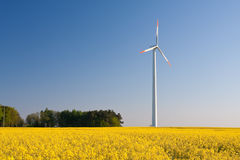 Windmill  farm in the rape field Royalty Free Stock Image